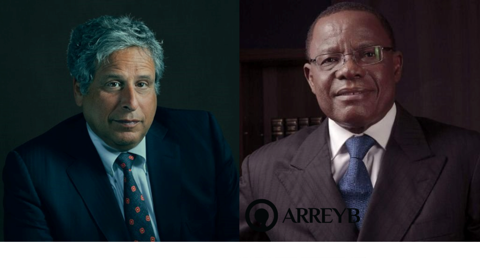Opposition Protests: Maurice Kamto Hires Canadian Intl Lawyer Robert Amsterdam