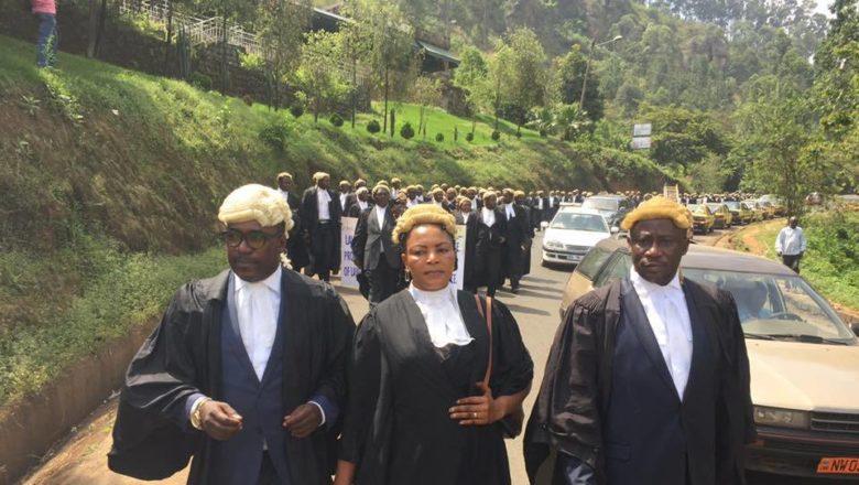 Cameroon: Lawyers On Strike Again