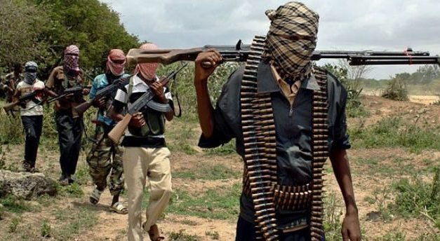 Cameroon: Govt Says 55 Former Boko Haram Members Have Dropped Arms